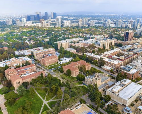 UCLA is a publicly-owned state school