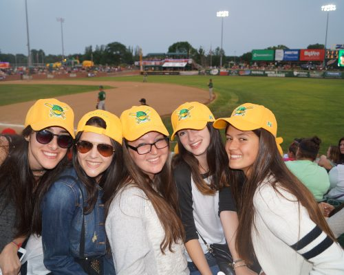 High School Pre College Summer Programs in Wisconsin at Baseball Game